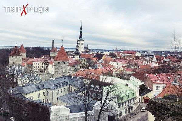 Most Beautiful Viewpoints in Tallinn, Estonia